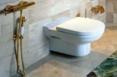 Гигиенический душ вместо биде: виды, установка и цены