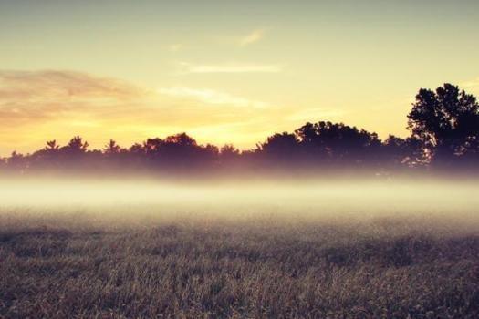 туман в качестве индикатора местонахождения скважины
