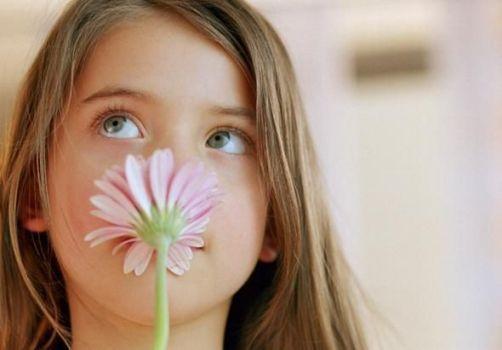 чистый воздух цветка